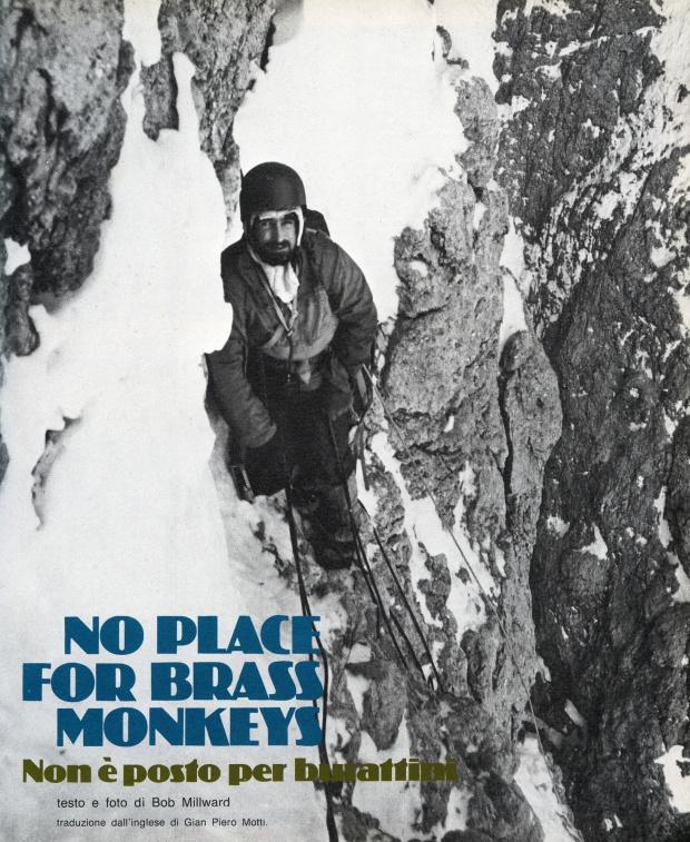monkeys002resizeforweb